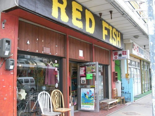 110211 REDFISH 01.JPG